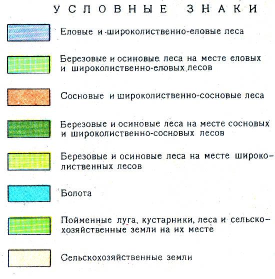 4 фото 1 слово ответы 201250  Stevskyru  обзоры
